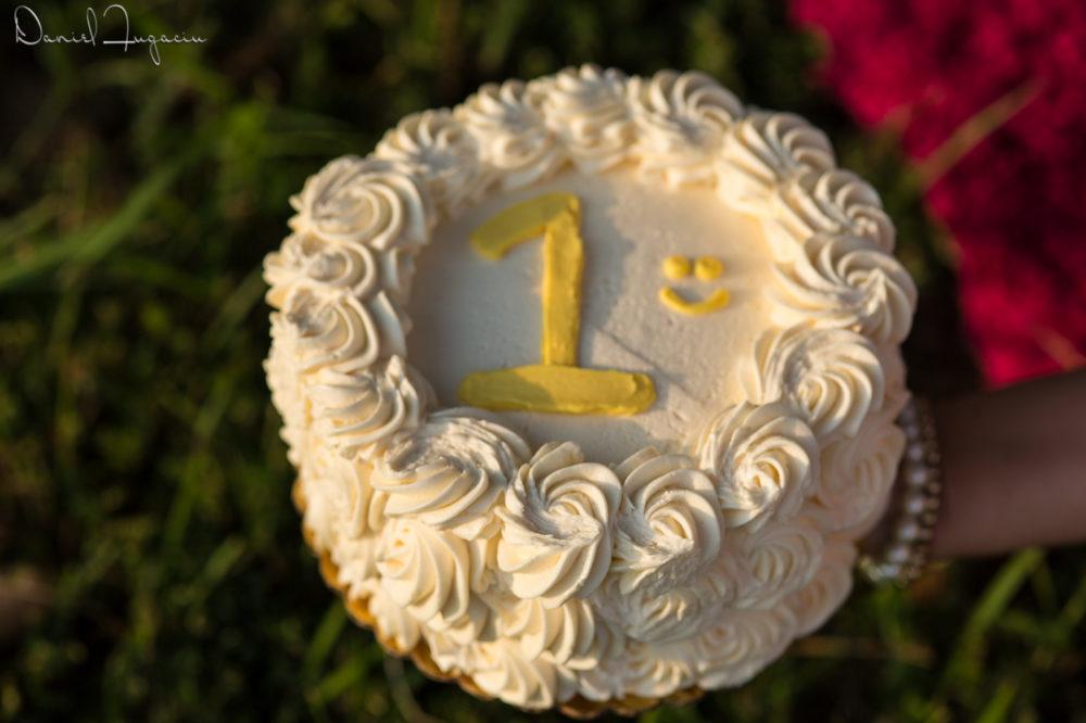 Cake smash Jasmeet (7)